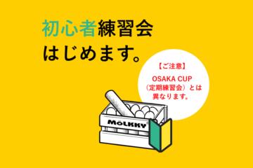 初心者練習会始めます。大阪モルックの会