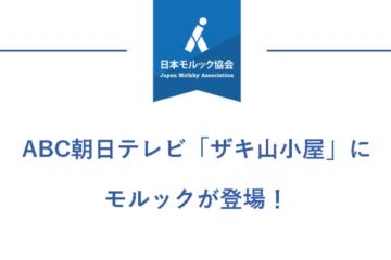 ABC朝日テレビ「ザキ山小屋」にてモルックが登場!!